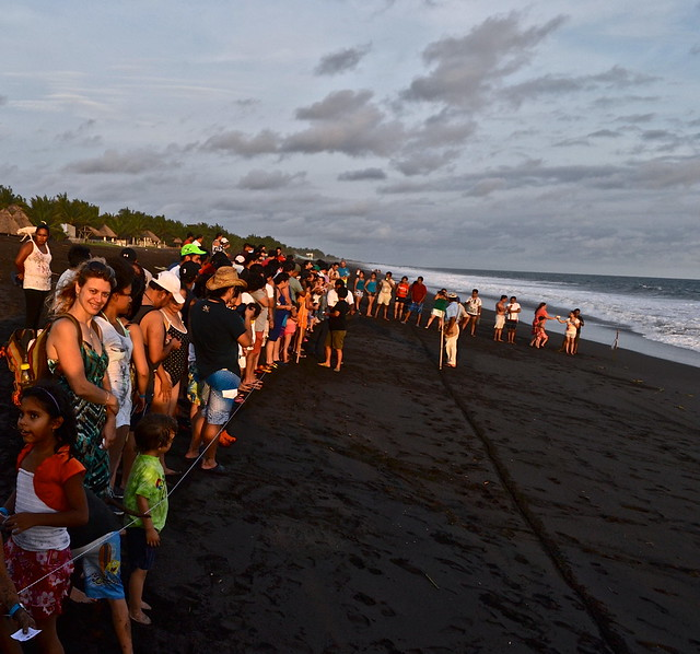 Gathering for the Turtle Release - Monterrico, Guatemala