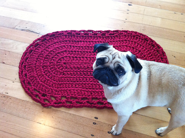 Crochet rug and ollie