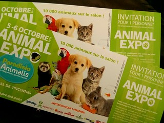 Animal Expo, Parc Floral de Paris, 6 septembre 2013