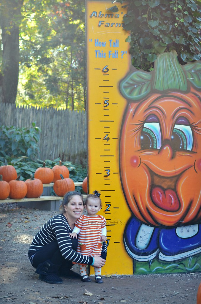 Pumpkin Patch Pictures