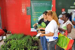 06/11/2013 - DOM - Diário Oficial do Município