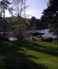 Utsikt mot sjøen frå hytta