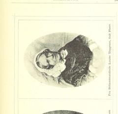 Image taken from page 383 of 'Anden omarbeidede og forøgede Udgave med over 100 illustrationer'