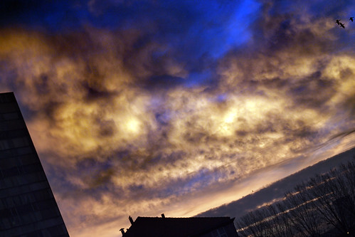 city winter light brussels urban clouds sunrise belgium ville urbain 2013 比利时
