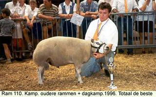 Ram 110 - 1996
