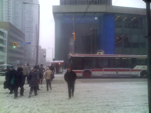 Winter snowfall, 12 March 2014 (2)
