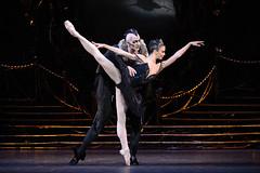 Natalia Osipova as Odile and Gary Avis as Von Rothbart in Swan Lake, The Royal Ballet