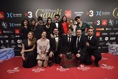 Catifa vermella VII Premis Gaudí (73)
