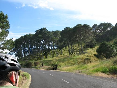 New Zealand 403