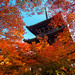三重塔 - 真如堂 / Shinnyo-do Temple by Active-U