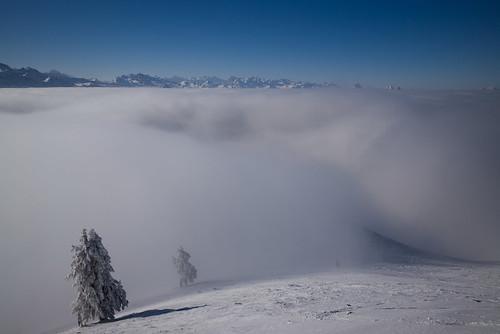 schnee winter mist snow fog schweiz switzerland europe nebel suisse 28mm rangefinder snowshoeing mp svizzera raquette schwyz 2015 svizra leicam schneeschuh 150207 schneeschuhwanderung elmaritm euthal chliaubrig typ240 ©toniv kleineraubrig m2402187