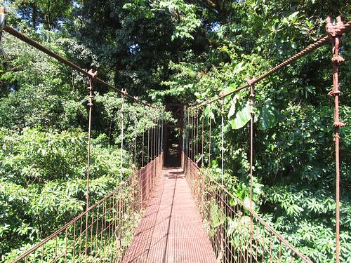 La Réserve de Monteverde: le pont suspendu