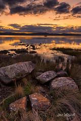 Tamar River sunset