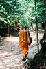 Buddhist monk walking through the rainforest
