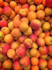 Apricot Apricots Yellow Orange Color Orange Fruit…