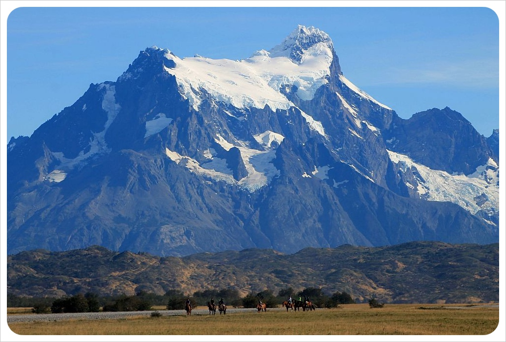 torres del paine mountain and horses