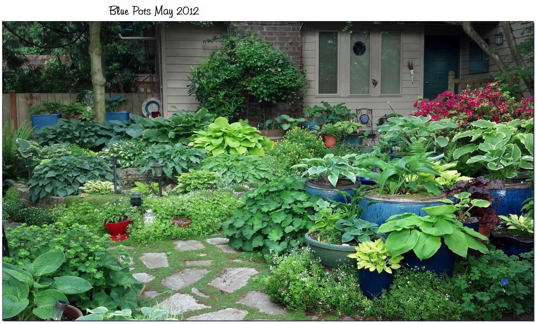 Three hosta gardens garden 1 - The garden web forum ...