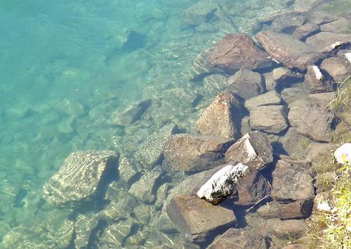 stream bed rocks 029