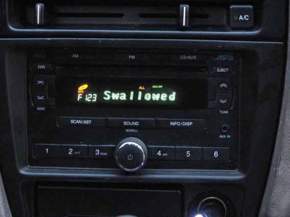 Suzuki Factory Radio