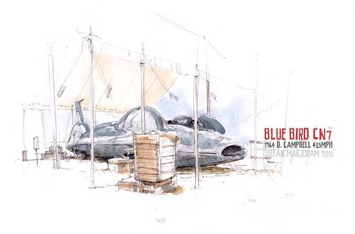 Bluebird CN7 by Stefan Marjoram
