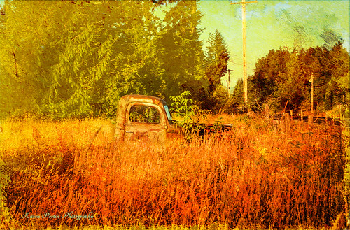texture field truck toledo crisbuscaglialenz