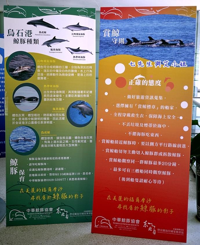 3 華棋168號賞鯨之旅