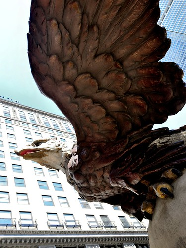 The Grand Central Station Eagle