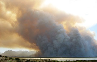 The Kogelberg Biosphere Reserve on Fire