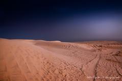 desert land.jpg