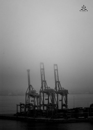 Cranes of Port Metro Vancouver in the fog