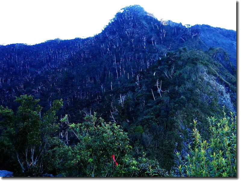 裸岩展望台東望大武主稜山頭