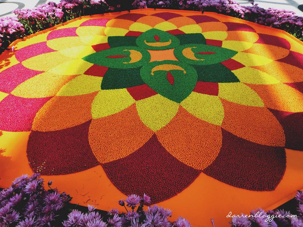 Deepavali Flower Field Display at Gardens by the bay darrenbloggie