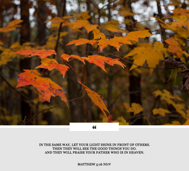 fall leaves and bible  passage