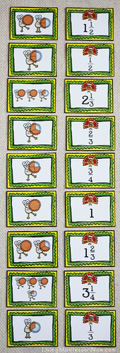 Turkey Fractions Layout
