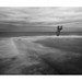 le plongeoir .. by bertholino fabrice