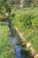苗栗的灌溉溝圳。