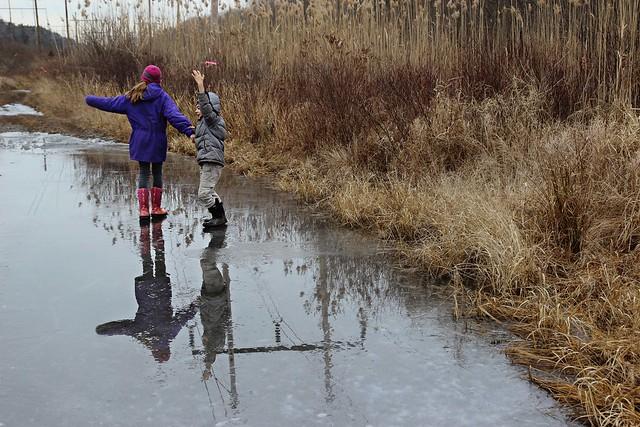 winter nature walks....