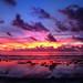 Sunrise in Paradise | Nauru
