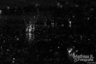 Regen in der Nacht | Projekt 365 | Tag 50