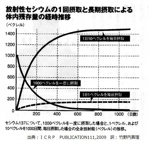 銫137攝食量與體內累積速度關係示意圖。(來源:體內曝露市民研究會)