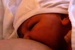 Bebis som ammar