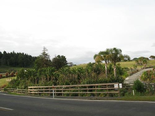 New Zealand 786