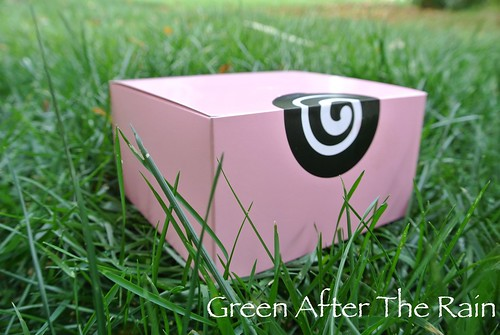 1501 Georgetown Cupcakes at Home 07.53.03-1