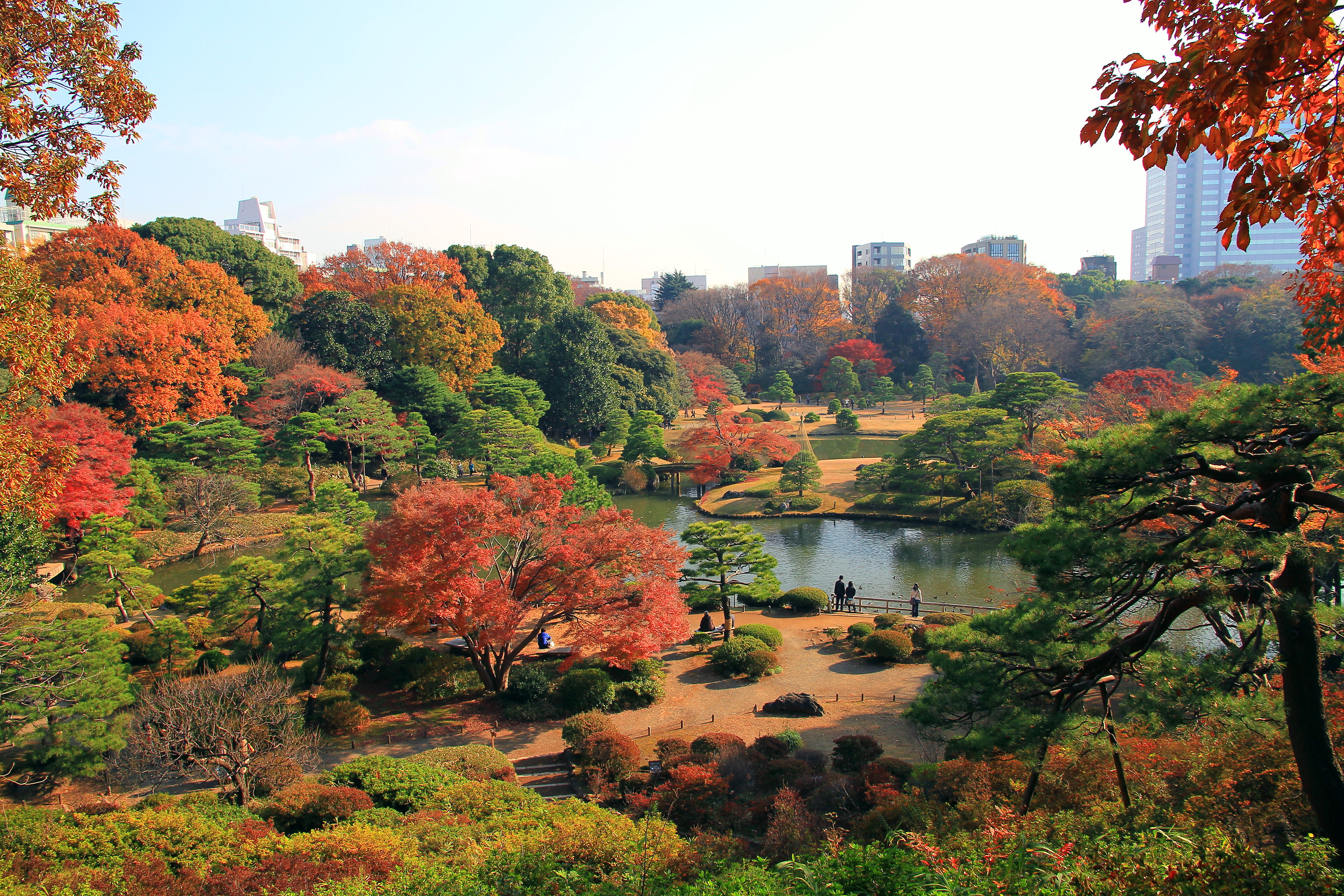 Bunkyo_Rikugien_Panoramic_View_In_Late_Autumn_1