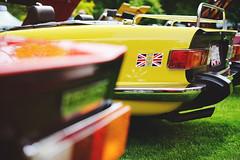 2016 All British Field Meet