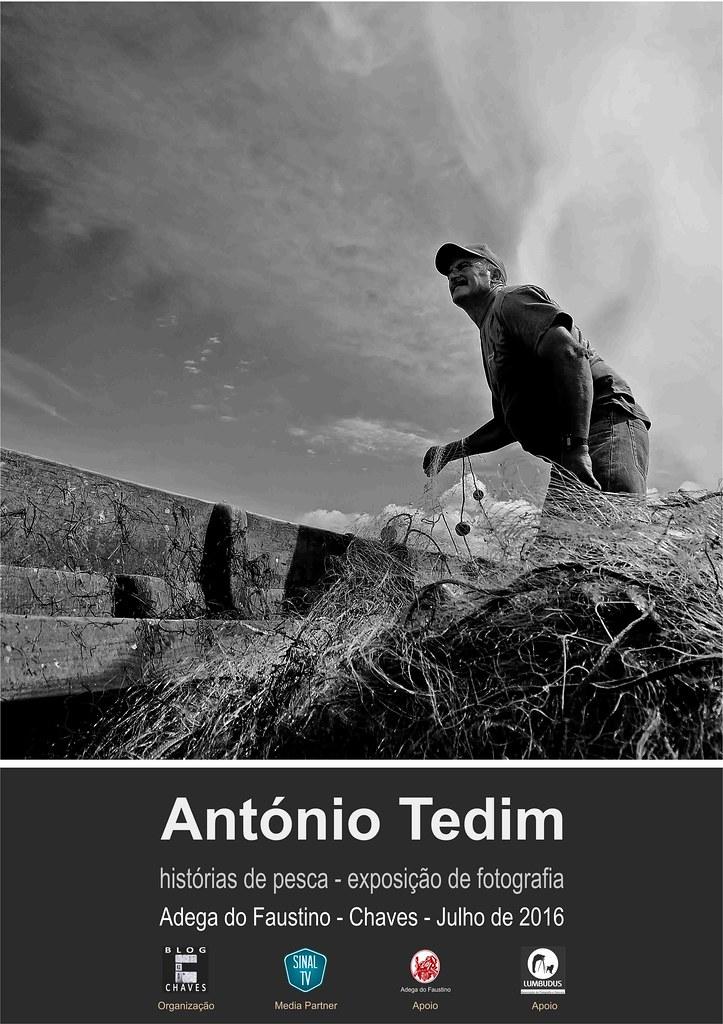 tedim-web-1