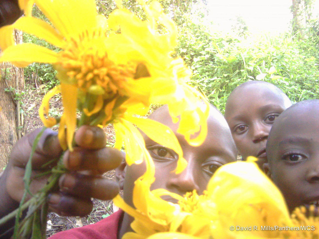 A camera trap photo of kids in Uganda's Kibale National Park