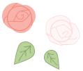 TC_roses