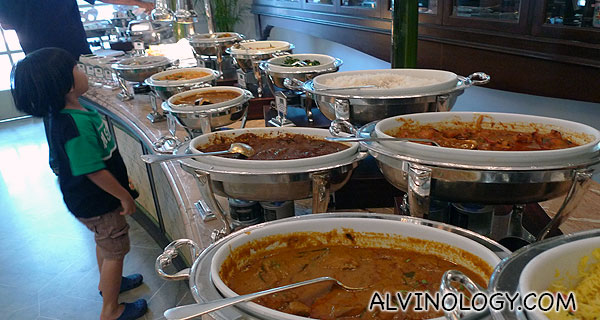 Large variety of curry dishes