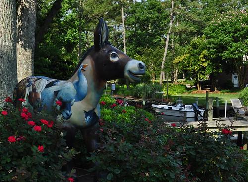 Junkin-Nickols Garden (13)